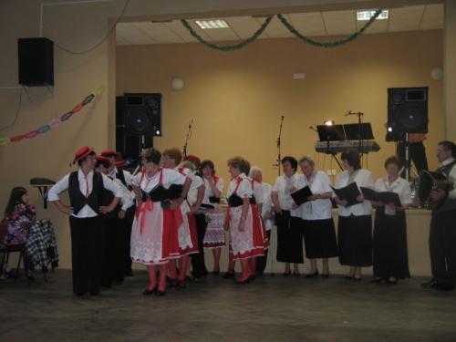 Snopoušovi - r. 2009