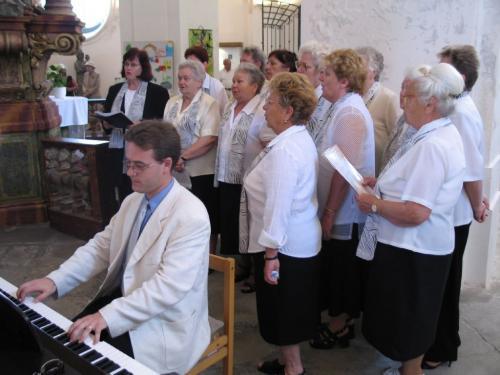 kostel sv.Víta - r. 2005, Dobřanská pouť